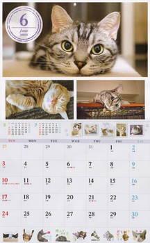 Calendar01.JPG