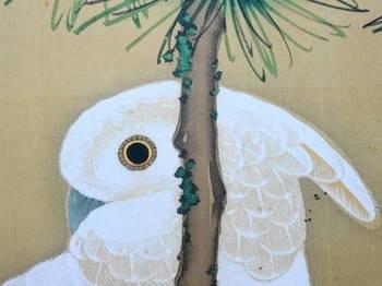 老松に鸚鵡図.JPG