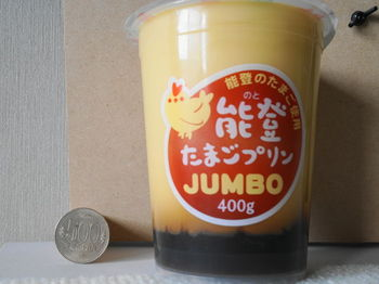 DSC09369 (1).JPG